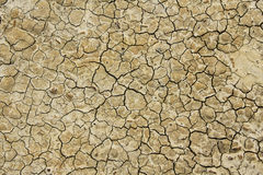 Arid field Stock Photos