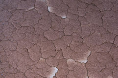 Arid geo after rains. To agiculture in thai Stock Photography