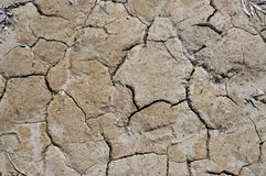 Arid ground Stock Images