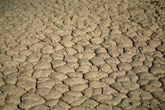 Arid ground in Death valley Royalty Free Stock Image