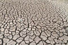 Arid ground land Stock Photos