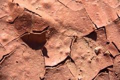 Arid ground Stock Image