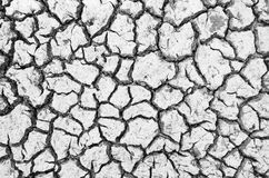 Arid ground texture. In countryside Stock Photos