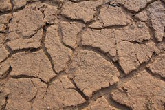 Arid. Ground without water it dry and arid Stock Photos