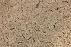Arid land. Cracks of the earth because of drought Stock Photos