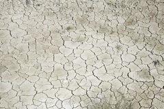Arid land Royalty Free Stock Photo