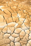 Arid land from northern thailand Stock Images