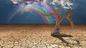 Arid lands. Dry tree and rainbow in cloudy sky royalty free illustration