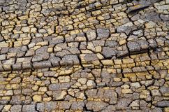 Arid lands. global warming. Arid lands background (drought, texture, environment Royalty Free Stock Photo