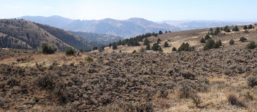 Arid Landscape. Royalty Free Stock Photo
