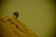 Arid landscape. Near Sahara Desert Royalty Free Stock Photo
