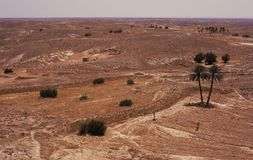 Arid landscape Stock Images