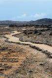 Arid Landscape. At Boca Tabla, Shete Boka National Park Stock Image