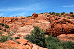 The arid landscape of Snow Canyon State Park in Utah. The arid red petrified sand dunes of Snow Canyon State Park in Southern Utah Royalty Free Stock Images