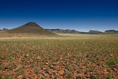 Arid landscape in stone desert Stock Photos