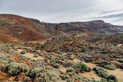 Arid landscape of Teide National park, Tenerife. Spain Royalty Free Stock Photos