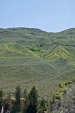 Arid Hill Landscape in Spring Stock Photos
