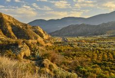 Arid mountains and valley with olive an citrus groves royalty free stock photography