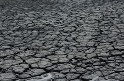 Arid mud. In a dry zone Royalty Free Stock Photos