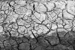 Arid nature. Closeup Crack soil black and white. Texture background Stock Photo