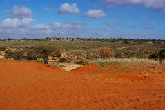 Arid and Red Central Australia Royalty Free Stock Photo