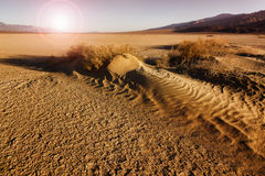 Arid sand desert sunset on Death Valley, USA Royalty Free Stock Photos