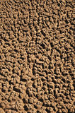 Arid Soil Stock Image