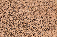 Arid Soil Stock Photography