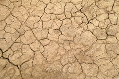 Arid soil. The background of arid soil royalty free stock image
