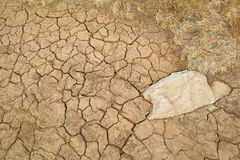Arid soil Royalty Free Stock Images