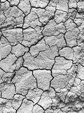 The arid soil. In B&G Royalty Free Stock Photo
