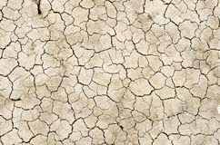 Arid soil Stock Photo
