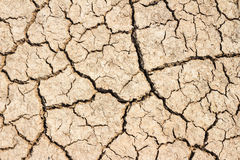 The arid soil. Stock Image