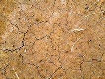 Arid soil. Arid soils lack nutrients in the soil Royalty Free Stock Photography