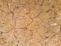 Arid soil. Arid soils lack nutrients in the soil Stock Photos