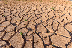 Arid soil. In summer season Stock Photography