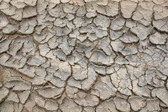 Arid soil surface Stock Photos