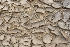 Arid soil surface Stock Images