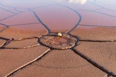 Arid Soils and rainwater. Drought concept ;arid Soils and rainwater Stock Photography