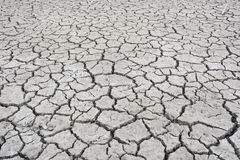Arid Stock Photography