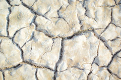Arid Texture. Texture of land from drought Stock Images