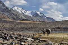 Arid valley in Tajikistan Stock Photography