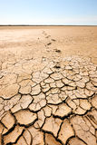 Arid and waste land Stock Photos
