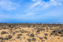 Arid zone at the coastline of Lanzarote Royalty Free Stock Images