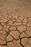 Aridity. Dryness of the soil, the soil cracks stock image