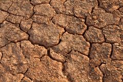 Aridity in a desert Stock Photography