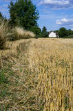 Aridity on french field. Photo of a dry field in France during summer 2015 royalty free stock photo