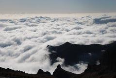 arieiroen gör pico Royaltyfri Foto