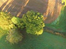 Ariel-Ansicht von Sussex-Ackerland Lizenzfreie Stockfotografie