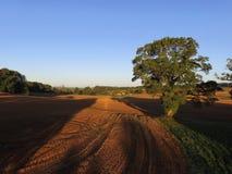 Ariel-Ansicht von Sussex-Ackerland Stockfotografie